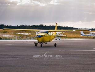 D-EDSE - Private Cessna 205