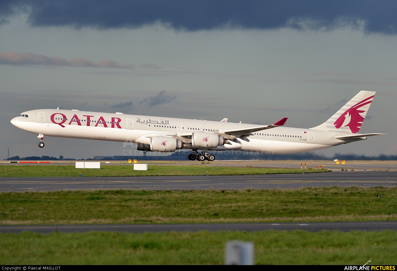 The Gallery For Gt Qatar Airways A340