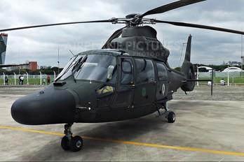 2024 - Brazil - Air Force Helibras HM-1 Pantera