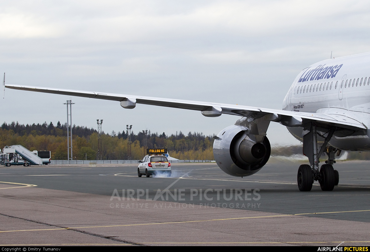 Lufthansa D-AILP aircraft at Moscow - Domodedovo