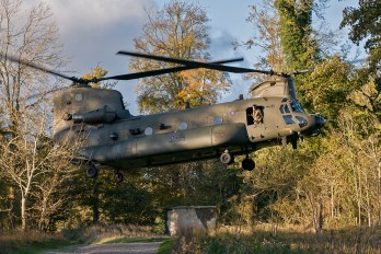- - Royal Air Force Boeing Chinook HC.4