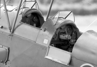 G-BLUZ - Private de Havilland DH. 82 Queen Bee