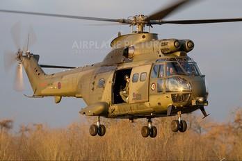 XW216 - UK - QinetiQ Westland Puma HC.2