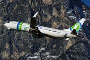 PH-HZL - Transavia Boeing 737-800 aircraft