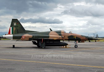 4506 - Mexico - Air Force Northrop F-5E Tiger II