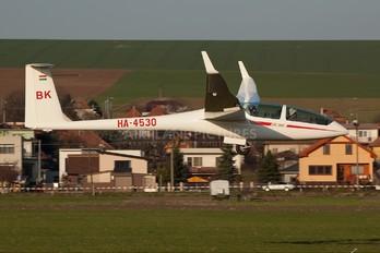 HA-4530 - Private DG Flugzeugbau DG-1000