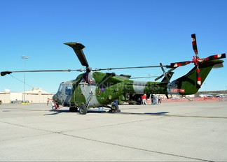 ZF538 - British Army Westland Lynx AH.9