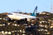 ZK-NGM - Air New Zealand Boeing 737-300 aircraft