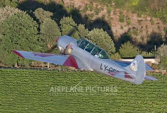 LY-GFC - Private Yakovlev Yak-52