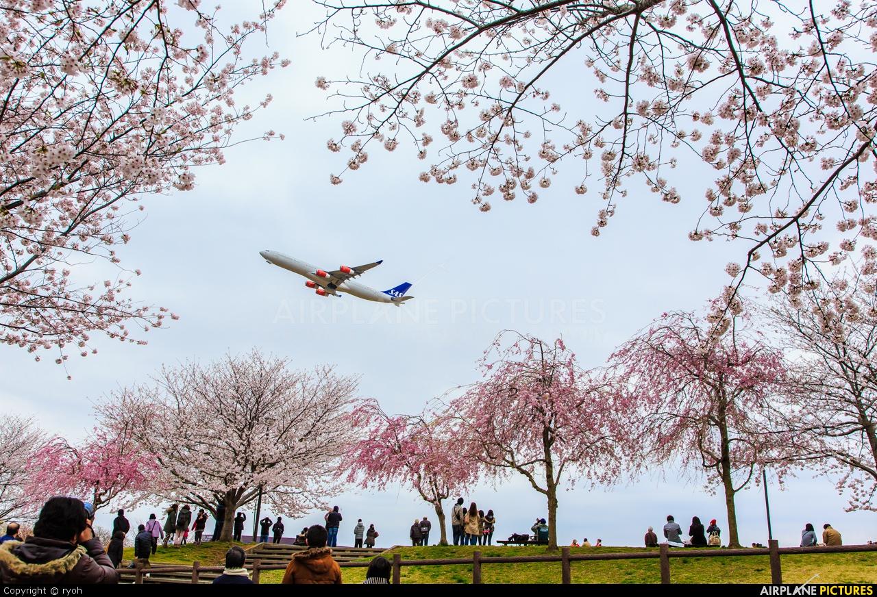 SAS - Scandinavian Airlines OY-KBM aircraft at Tokyo - Narita Intl