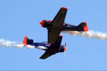 D-FHGL - The Flying Bulls North American Harvard/Texan (AT-6, 16, SNJ series)
