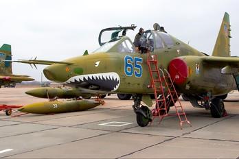 65 - Ukraine - Air Force Sukhoi Su-25UB