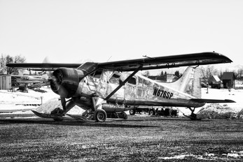 N676SP - Private de Havilland Canada DHC-2 Beaver