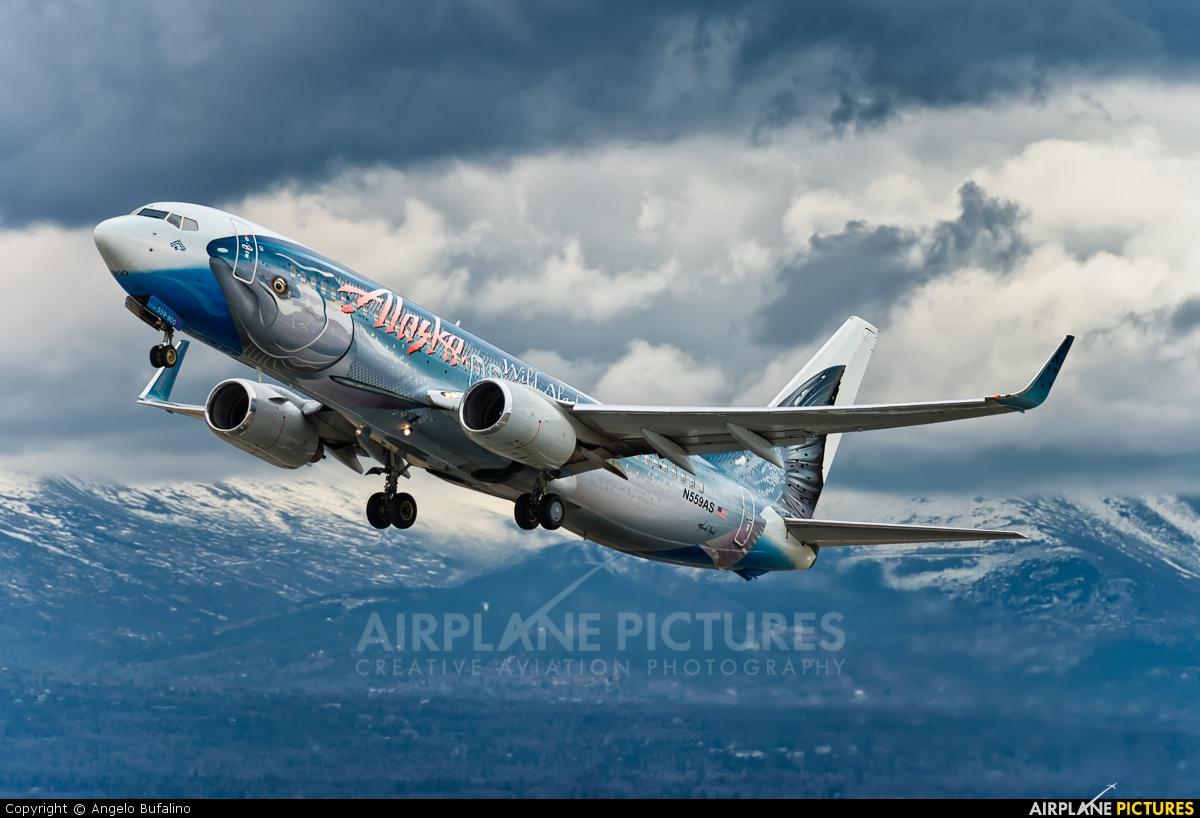 Alaska Airlines N559AS aircraft at Anchorage - Ted Stevens Intl / Kulis Air National Guard Base