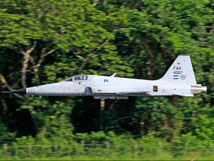 FAH-4007 - Honduras - Air Force Northrop F-5E Tiger II