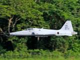 FAH-4007 - Honduras - Air Force Northrop F-5E Tiger II aircraft