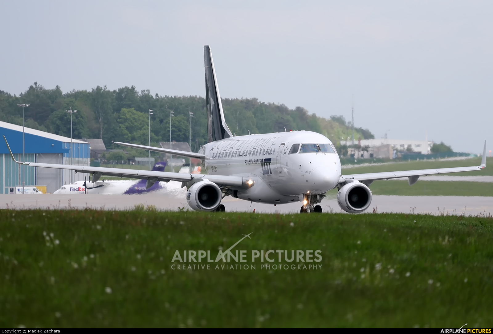 LOT - Polish Airlines SP-LDC aircraft at Gdańsk - Lech Wałęsa