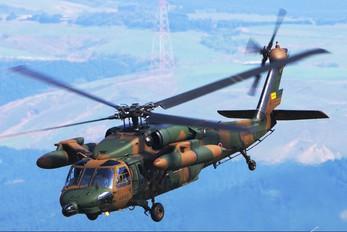 43120 - Japan - Ground Self Defense Force Mitsubishi UH-60J