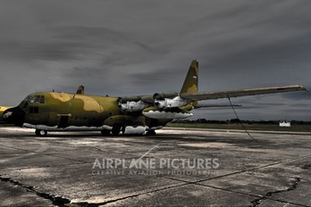 TC-68 - Argentina - Air Force Lockheed C-130H Hercules