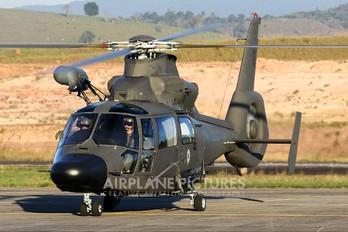 EB-2001 - Brazil - Army Helibras HM-1 Pantera