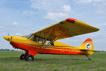 SP-NOE - Private Aviat A-1 Husky