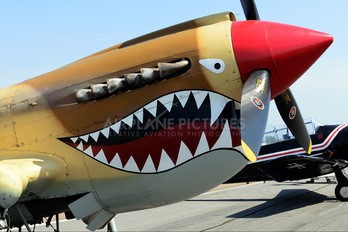 NL85104 - Air Museum Chino Curtiss P-40N Warhawk