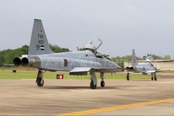 FAH-4007 - Honduras - Air Force Northrop F-5E Tiger II