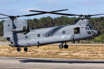 D-891 - Netherlands - Air Force Boeing CH-47F Chinook