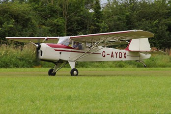 G-AYDX - Private Beagle A61 Terrier