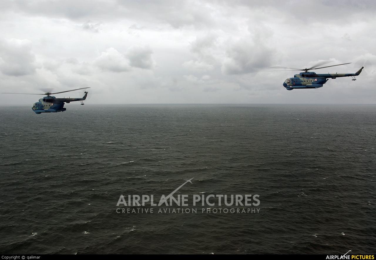 Poland - Navy 1002 aircraft at In Flight - Poland