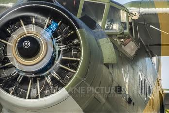 SP-AIN - Private Antonov An-2