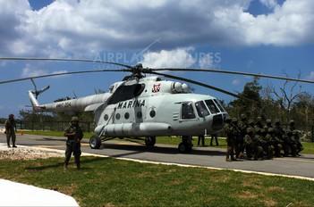 AMHT-204 - Mexico - Navy Mil Mi-17