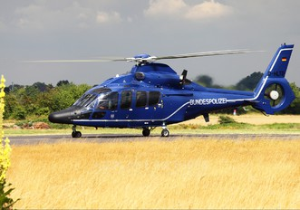 D-HLTD - Germany -  Bundespolizei Eurocopter EC155 Dauphin (all models)