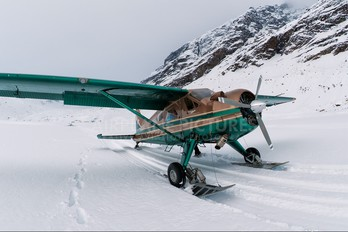 N144Q - Talkeetna Air Taxi de Havilland Canada DHC-2 Beaver