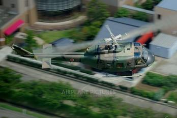 41731 - Japan - Ground Self Defense Force Fuji UH-1J