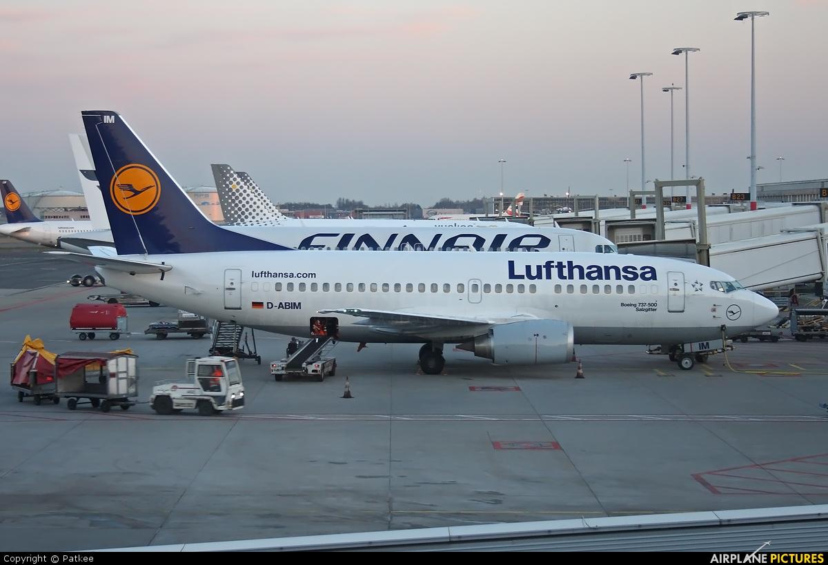 Lufthansa D-ABIM aircraft at Amsterdam - Schiphol