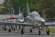 """037 - Poland - Air Force """"Orlik Acrobatic Group"""" PZL 130 Orlik TC-1 / 2 aircraft"""