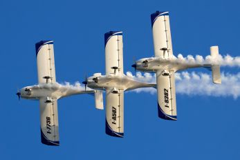I-8382 - WeFly Team FlySynthesis Texan