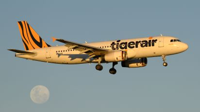 VH-VNQ - Tiger Airways Airbus A320