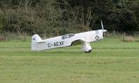 G-AEXF - Private Percival P.6 Mew Gull aircraft