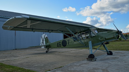 D-EXUB - Private Fieseler Fi.156 Storch
