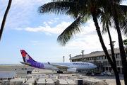 N391HA - Hawaiian Airlines Airbus A330-200 aircraft