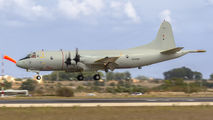 60+06 - Germany - Navy Lockheed P-3C Orion aircraft