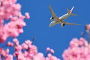 JA827J - JAL - Japan Airlines Boeing 787-8 Dreamliner aircraft
