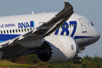 JA816A - ANA - All Nippon Airways Boeing 787-8 Dreamliner