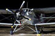 SP-FAH - Classic Wings Antonov An-2 aircraft