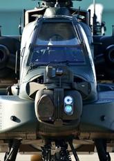 74505 - Japan - Ground Self Defense Force Fuji AH-64DJP