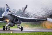 J-5008 - Switzerland - Air Force McDonnell Douglas F/A-18C Hornet aircraft
