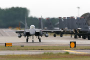 91-0309 - USA - Air Force McDonnell Douglas F-15E Strike Eagle aircraft
