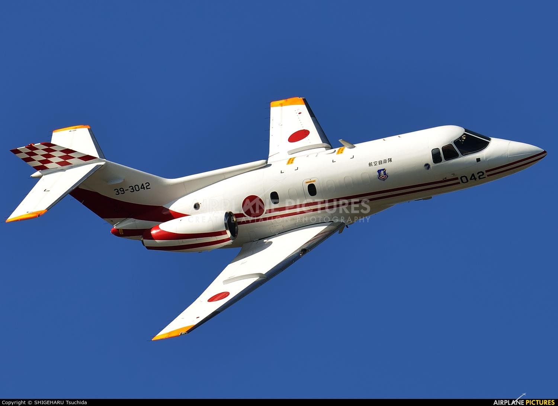 Japan - Air Self Defence Force 39-3042 aircraft at Iruma AB